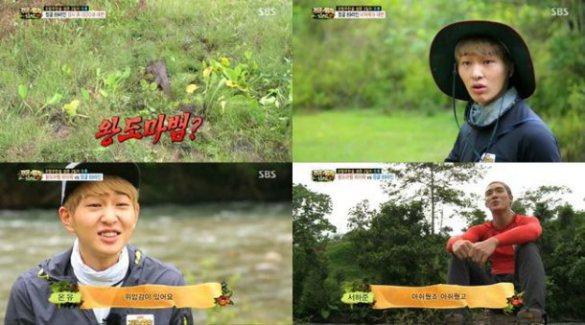 onew-law-of-the-jungle